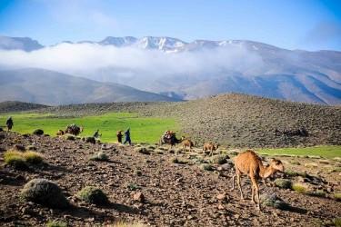 Les Kasbahs de Ouarzazate