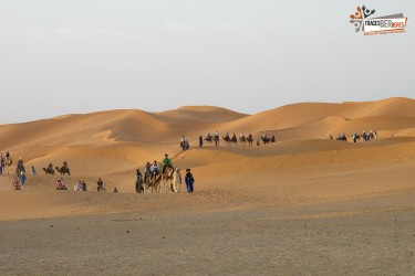 Excursion Dunes Zagora et Vallee du Draa