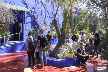Majorelle Gardens, Museum and Ramparts