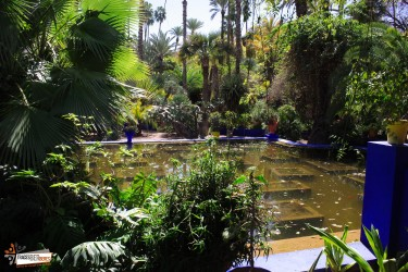Marrakech Gardens Private Tour