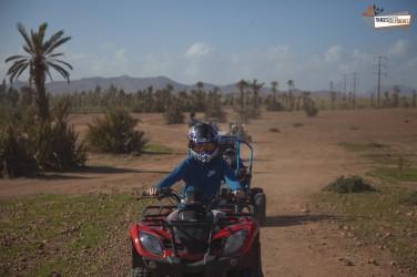 Quad et Chameau a Marrakech