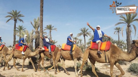 Camel Ride in Palmeraie
