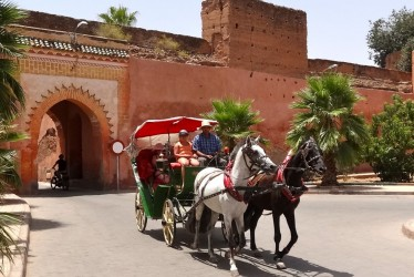 Marrakech en Calèche